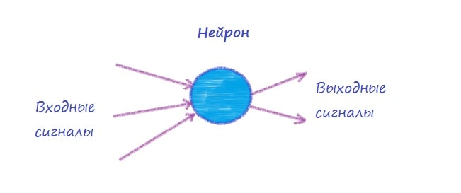 Элемент нейронной сети