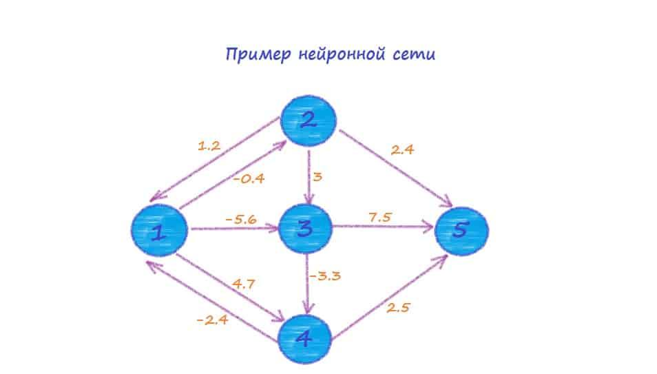 Пример нейронной сети