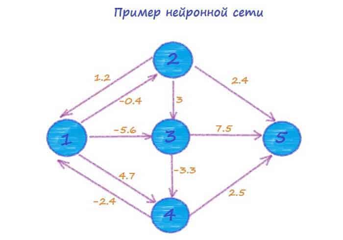 Пример нейронной сети.